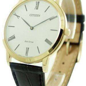 Citizen Eco-Drive AR1113-12B Mens Watch