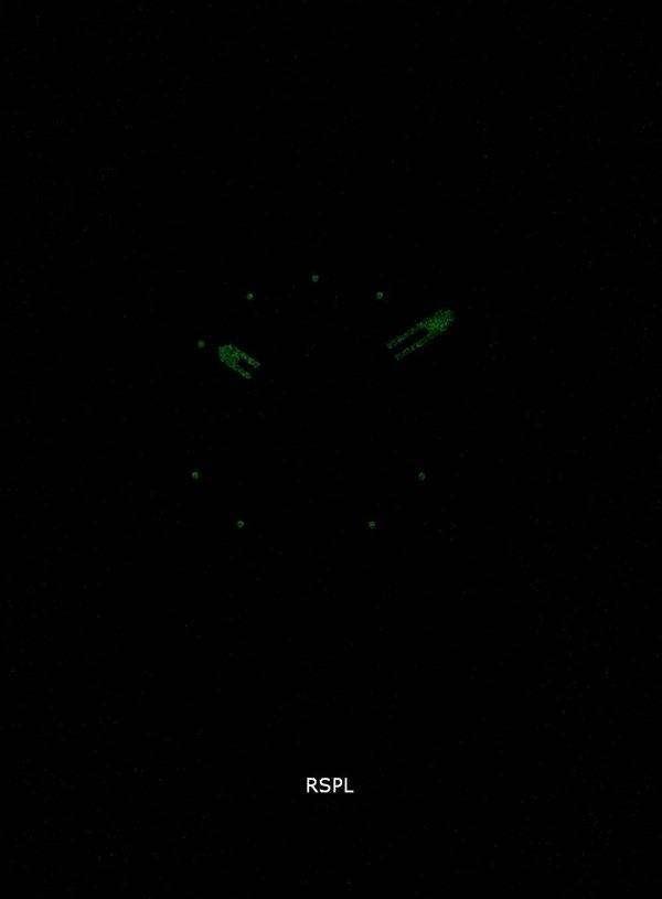화석 기계 쿼 츠 크로 노 그래프 블랙 건 메탈 이온 도금 FS4931 남자 시계