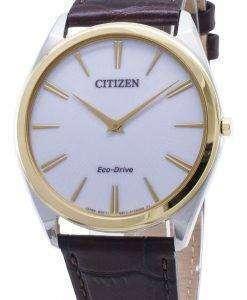 시민 스틸레토 AR3074 - 03A 에코 드라이브 아날로그 남성용 시계