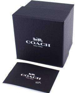코치 박스